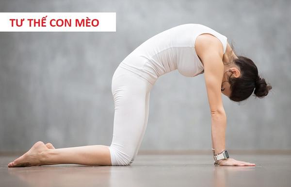 tập yoga chữa gai cột sống - tư thế con mèo