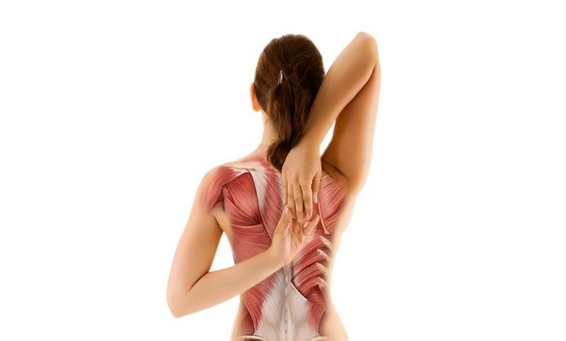 Đau cơ lưng kéo dài