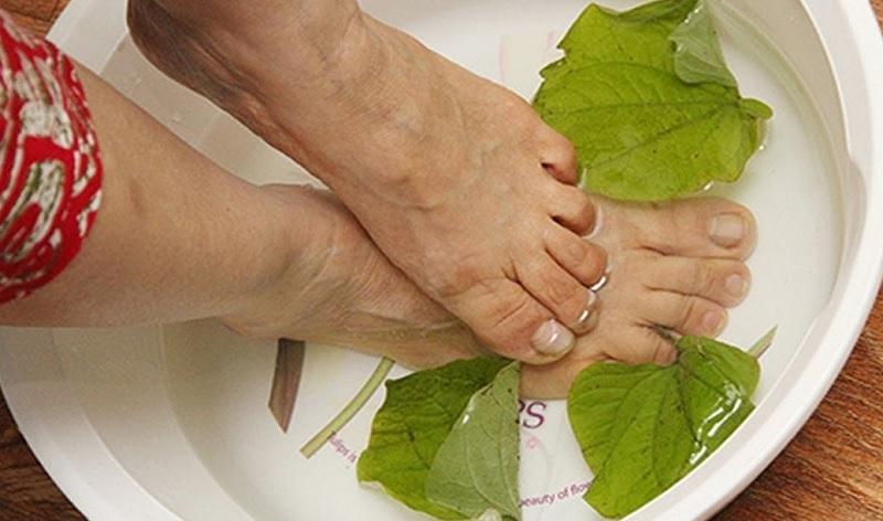 Ngâm chân với lá lốt chữa thoát vị đĩa đệm